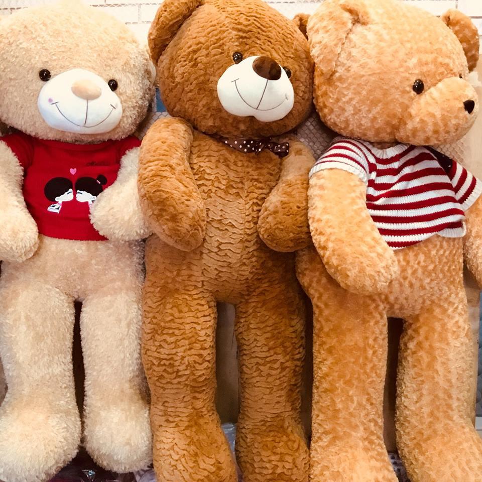 Gấu Teddy Áo Len Giá Rẻ TPHCM