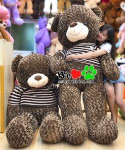 Gấu Bông Đẹp Giá Rẻ TPHCM